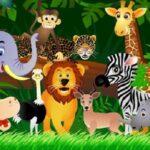 giấc mơ thấy động vật