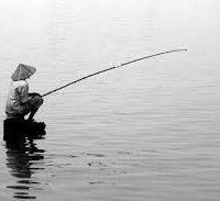 Chiêm bao thấy câu cá đánh số gì – điềm báo gì ?